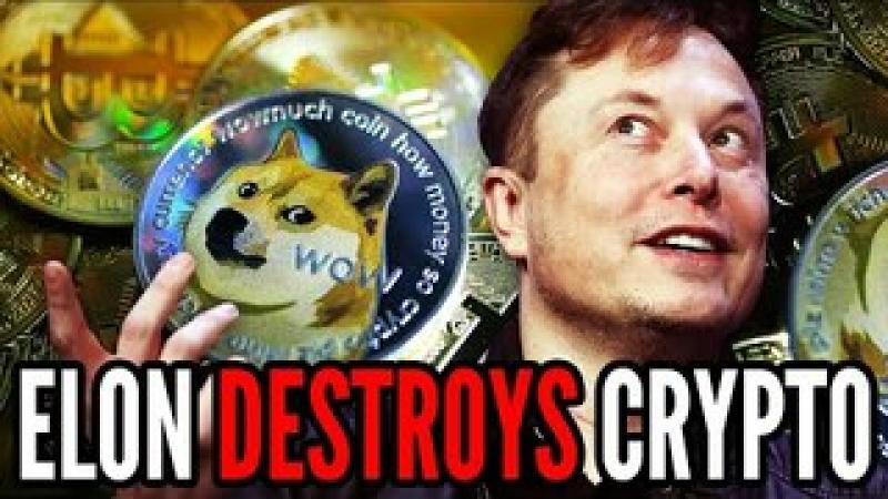 Elon Musk is DESTROYING Bitcoin and PUMPING Doge, Why I Filed a Complaint to the SEC